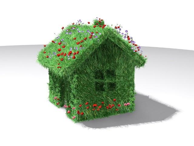 Creative_green_house_2