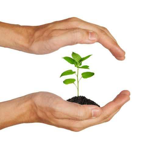 Κατάθεση νομοσχεδίου για την προστασία του περιβάλλοντος