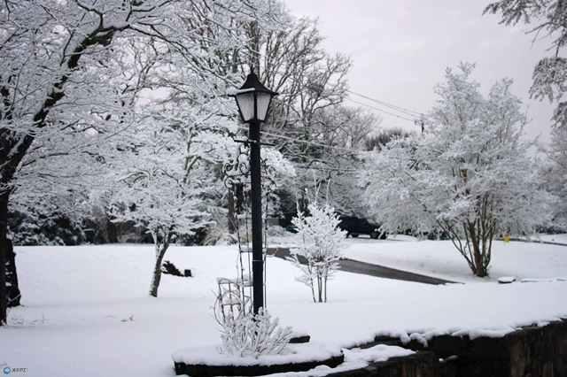 Feb Snow 7