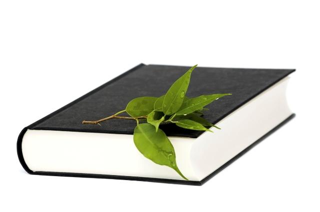 Χαμηλές περιβαλλοντικές επιδόσεις για τους Έλληνες μαθητές