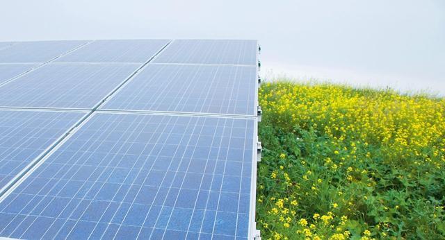 Οικιακά φωτοβολταϊκά από τη Solar Cells