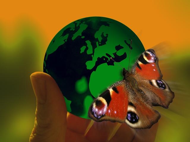 O OHE εκπέμπει SOS για το περιβάλλον