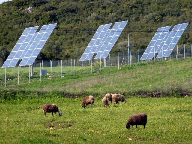 Στο ΥΠΕΚΑ η ΠΑΣΕΓΕΣ για τα αγροτικά φωτοβολταϊκά