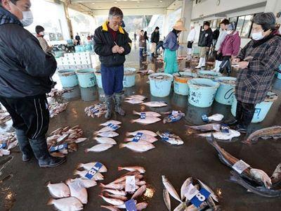 Ραδιενέργεια και στα ψάρια της Φουκουσίμα