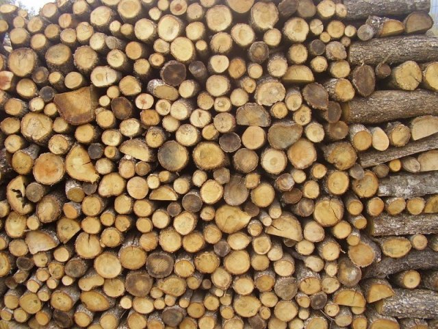 Ανά κυβικό μέτρο η πώληση καυσόξυλων