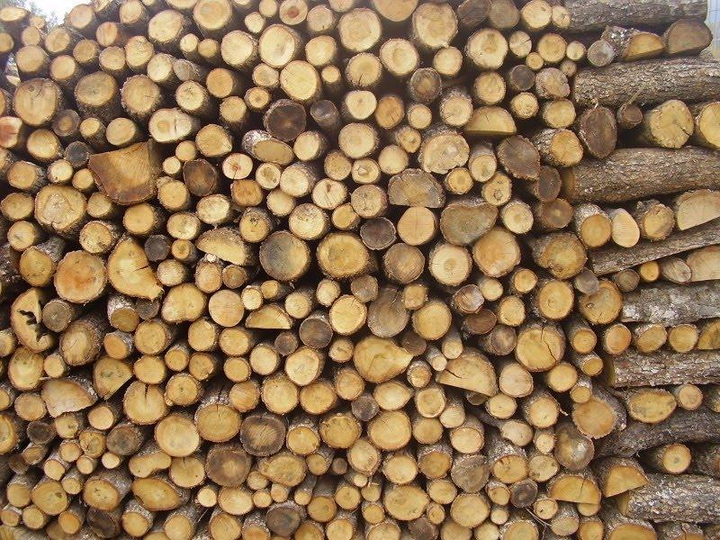 Εισαγωγή καυσόξυλων από τη Σερβία