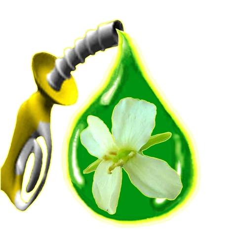 Τηγανόλαδο για ενέργεια στην Κοζάνη