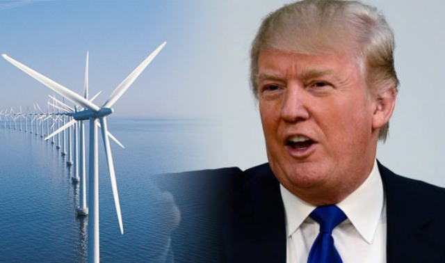donald-trump-wind-power