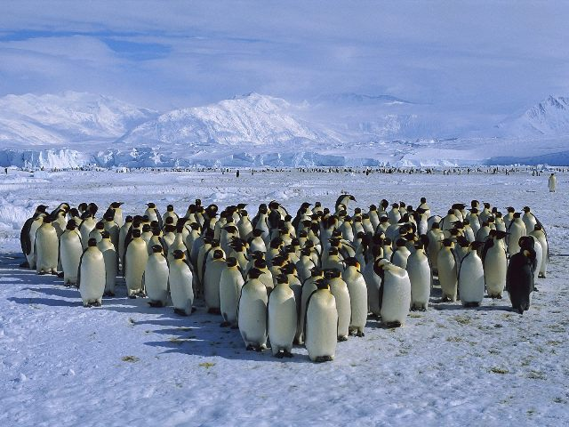 Ρωσική άρνηση για καταφύγιο στην Ανταρκτική