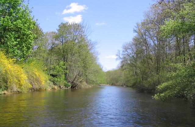 Μόλυνση από χημικά στα ευρωπαϊκά ποτάμια