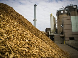 Biomass_plant-700ko