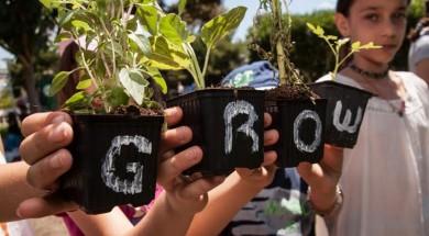 grow greenpeace