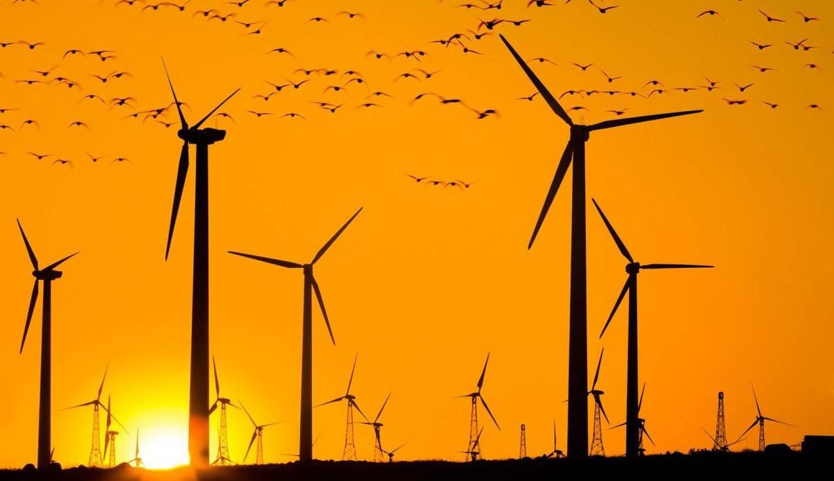 Εξοφλούνται οι παραγωγοί ρεύματος από ΑΠΕ για Ιανουάριο και Φεβρουάριο