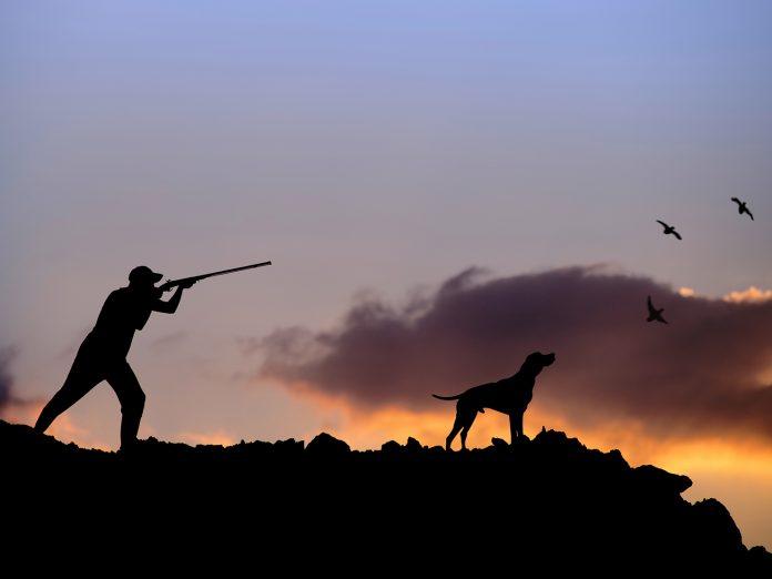 Εκσυγχρονίζεται το θεσμικό πλαίσιο για το κυνήγι