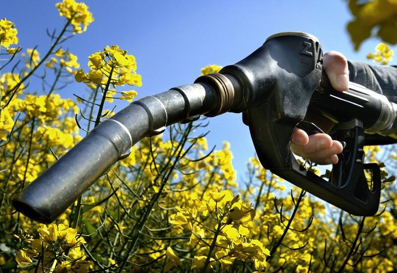 """Πόσο """"αθώα"""" είναι τα υποκατάστατα του πετρελαίου;"""