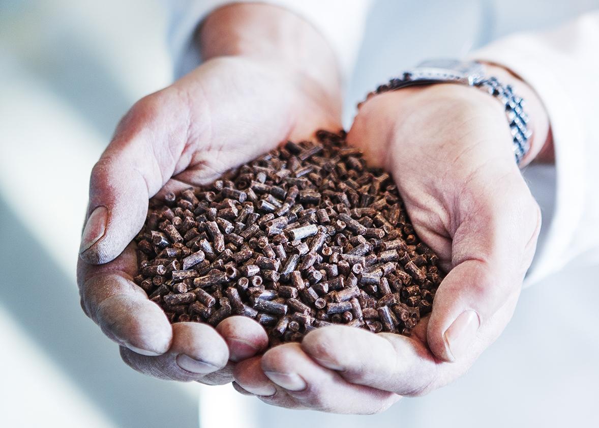 Έρχονται τα τρόφιμα από καθαρό φυσικό αέριο
