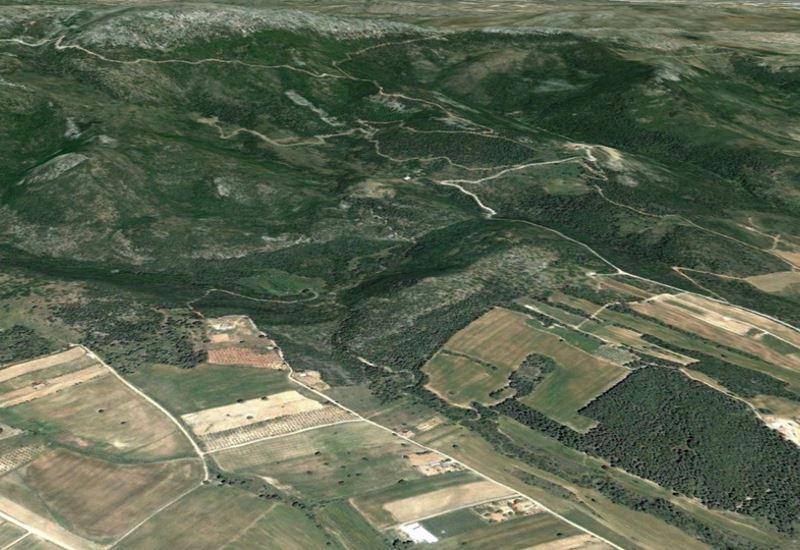 Σωκρ. Φάμελλος: «Η καθυστέρηση των δήμων στους δασικούς χάρτες γεννά ανησυχίες»