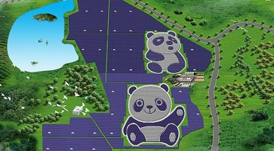 Panda-Green-Energy-China