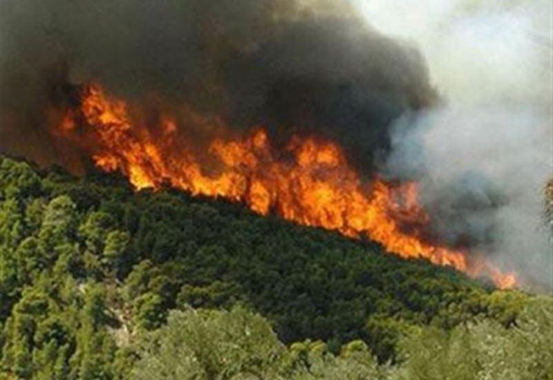 Συνολικά 39 δασικές πυρκαγιές το τελευταίο 24ωρο στην Ελλάδα