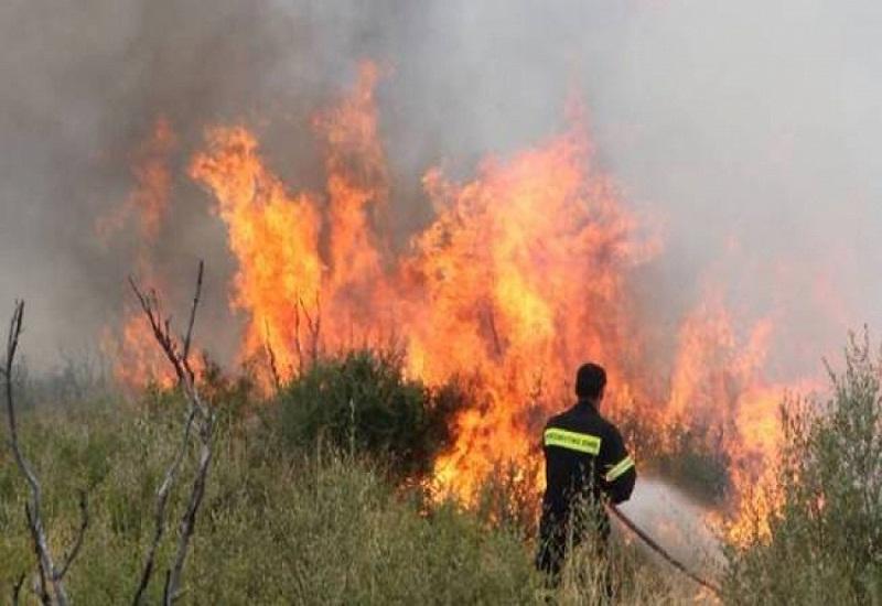 Συνεχίζεται η μάχη με τις φλόγες στη Ζάκυνθο- Μεγάλη οικολογική καταστροφή