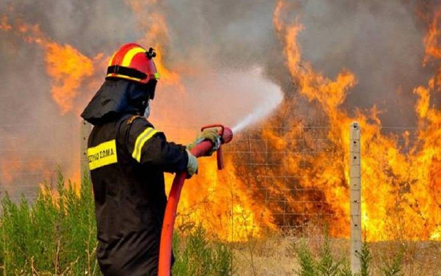 Η άνοδος της θερμοκρασίας θα φέρει περισσότερες πυρκαγιές