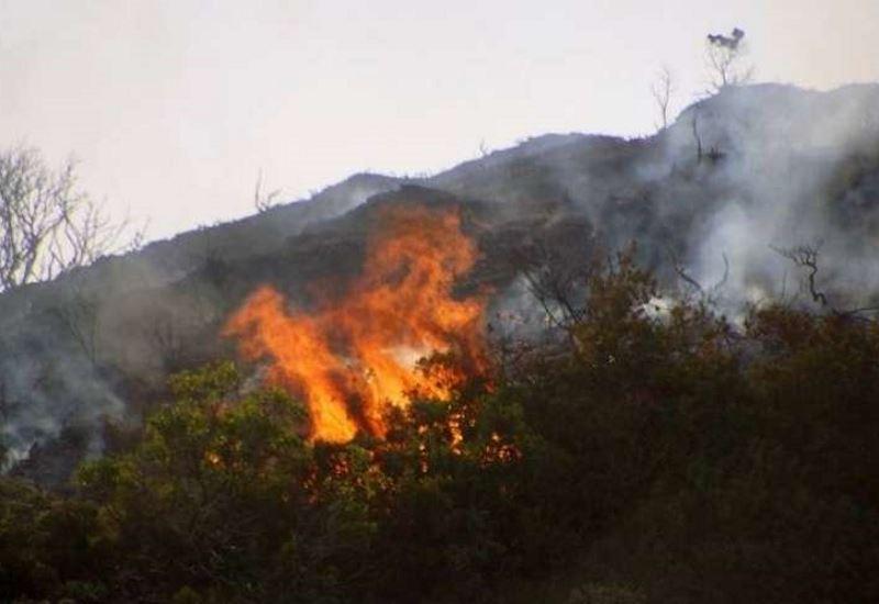 Υψηλός κίνδυνος πυρκαγιάς- 46 μέτωπα σε 24 ώρες