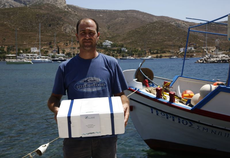 "Greenpeace: Αλλάζοντας την αγορά μέσα από ""Ένα κουτί θάλασσα"""