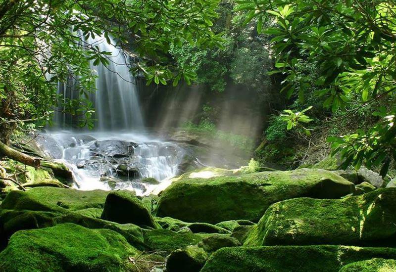 Προβληματισμένες 11 περιβαλλοντικές οργανώσεις για το σχέδιο νόμου για την προστασία των περιοχών Natura