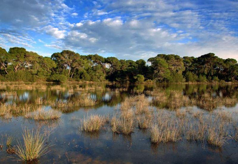 22% των Θαλασσών Κηρύσσεται Natura