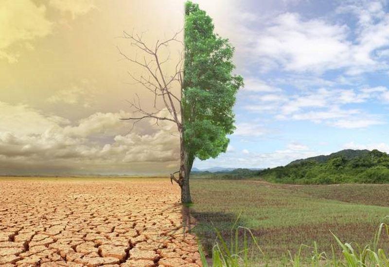 "To ΠΑΣΕΠΠΕ στη διαβούλευση για το ""2030 Climate Target Plan"""