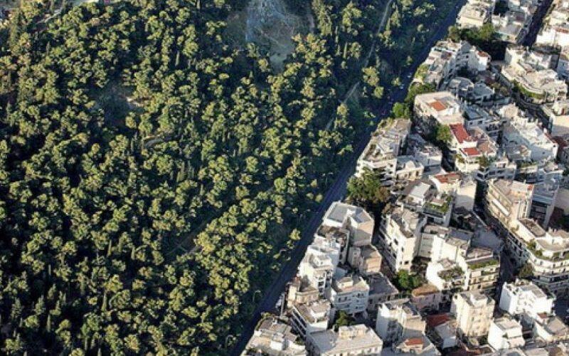 Συνεργασία Λουμάκη – Αμυρά για τα προβλήματα από τους δασικούς χάρτες