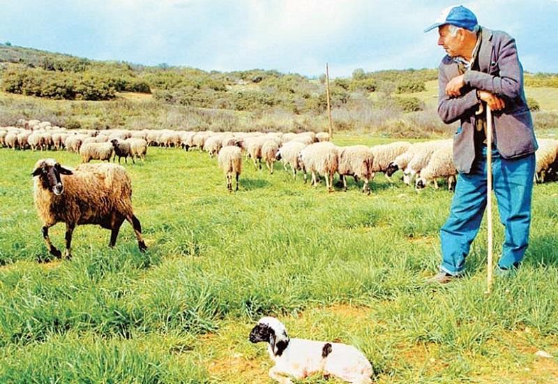 Ενημερώσεις του αγροτικού κόσμου από τον Κτηνοτροφικό Σύλλογο Αττικης
