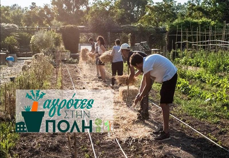 Πρασινίζουν το γκρίζο οι Αγρότες στην Πόλη