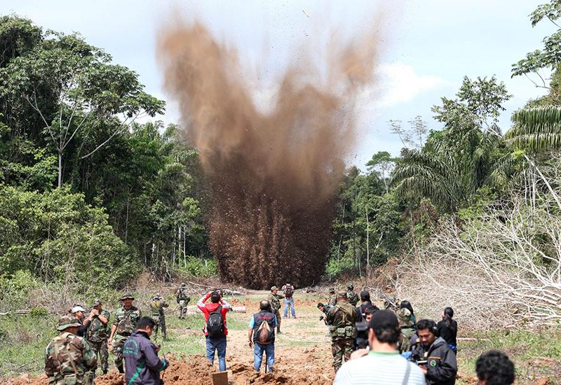 Σοκάρουν τα ποσοστά των δασικών απωλειών για το 2017