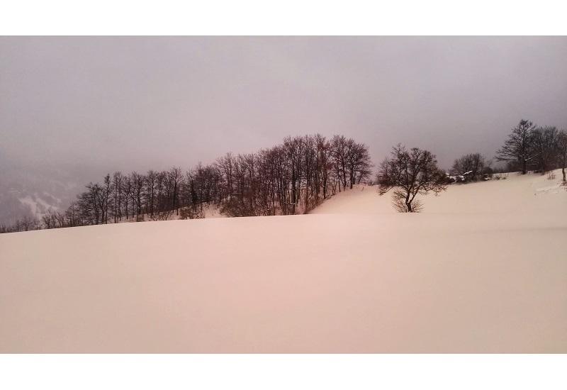 Απειλητικό ροζ χιόνι