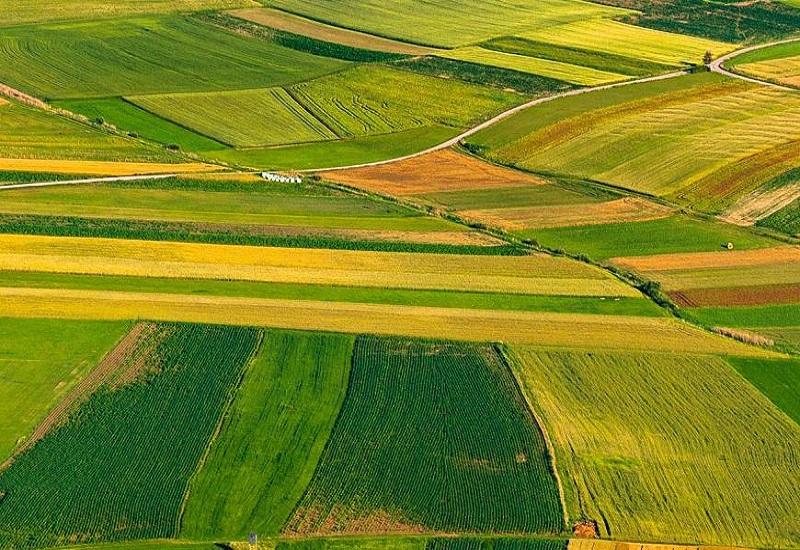 Η Bayer περιγράφει το όραμά της για το μέλλον της γεωργίας