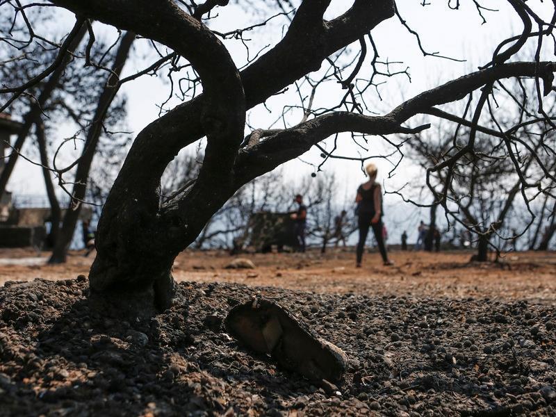 Σοκ: Καρκινογόνες ουσίες στο έδαφος και το νερό στο Μάτι
