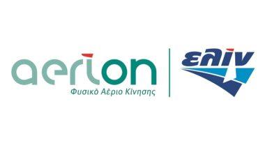 elin-aerion