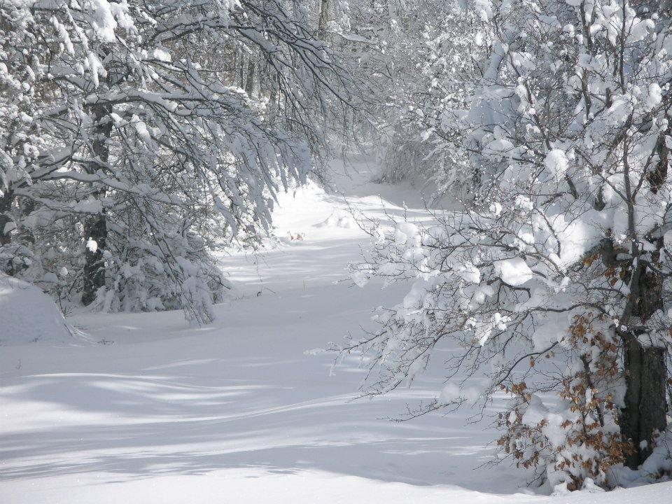 Παραγωγή ανανεώσιμης ενέργειας από χιόνι!