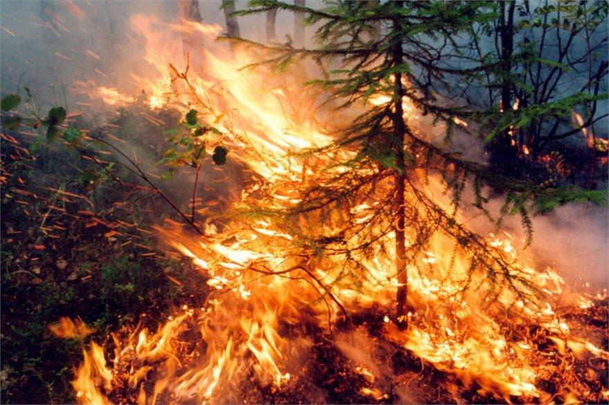 Ανυπολόγιστη η οικολογική καταστροφή από τις πυρκαγιές σε Σιβηρία και ρώσικη Άπω Ανατολή