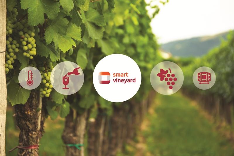 Η WATT+VOLT λανσάρει έναν «smart» βοηθό για κάθε καλλιέργεια και αμπελώνα