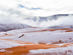 gr-weather-sahara-desert-snow024a