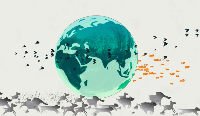 Παγκόσμια Ημέρα Γης: Μόλις το 2,8% των οικοσυστημάτων παραμένει ανέπαφο