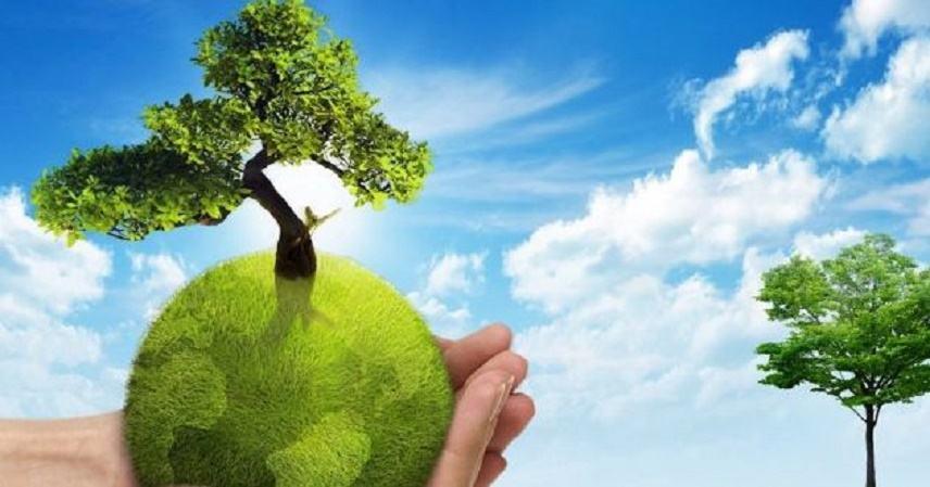 Δημιουργούνται πράσινα σημεία στην Κεντρική Μακεδονία