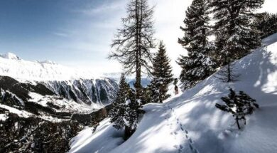mountains-snow-winter-forest-outdoors-snow-mountain-cold (1)