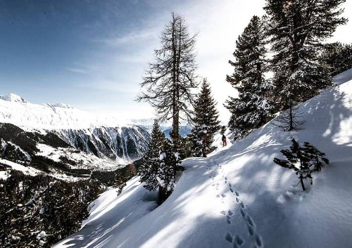 Σιβηρία: Μικροπλαστικά διεισδύουν στο έδαφος καθώς λιώνει το χιόνι