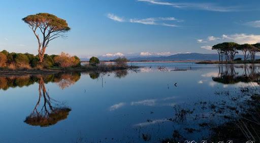 Natura 2000: Περιβαλλοντικές οργανώσεις ζητούν απόσυρση του νομοσχεδίου