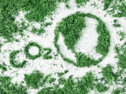 lettering-co2-and-drawing-planet-earth-from-grass-and-moss-the-concept-of-ecology-air-pollution-and_t20_b64Xbg (1)