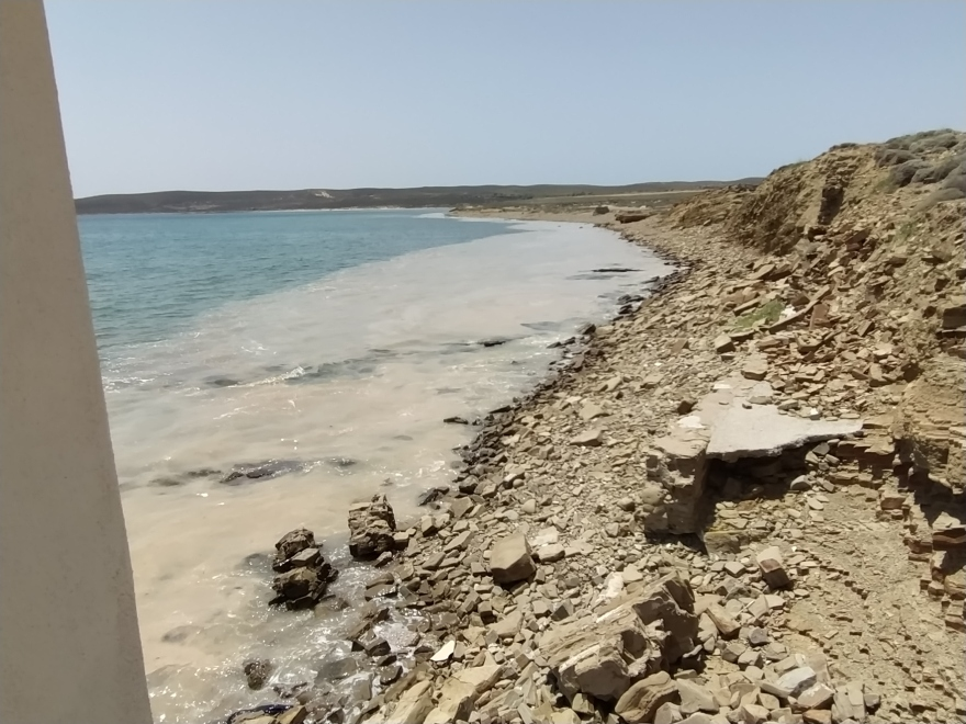 Λήμνος: Κλιμάκιο του ΥΠΕΝ στο νησί για για το φαινόμενο της βλέννας