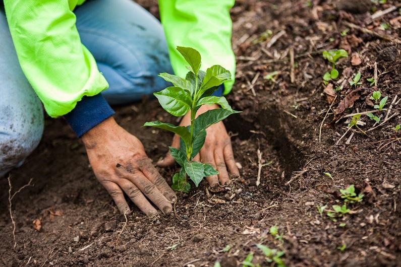 Η Nestlé παρουσιάζει το σχέδιο της για τη μετάβαση σε ένα σύστημα προστασίας και αποκατάστασης του περιβάλλοντος
